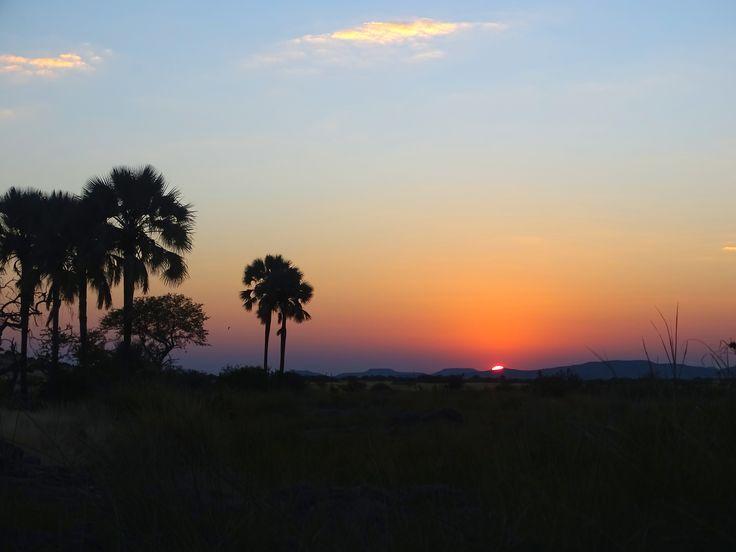 Palmwag, Namibia. Photo: Christa Fris