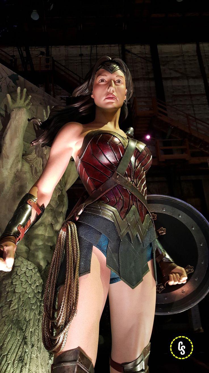 Batman V Superman Dawn Of Justice  Wonder Woman  Batman-4550