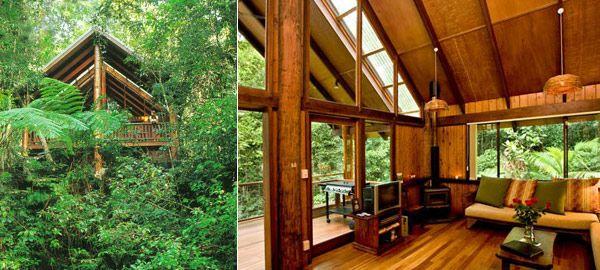 The Canopy Rainforest Treehouses, Australia