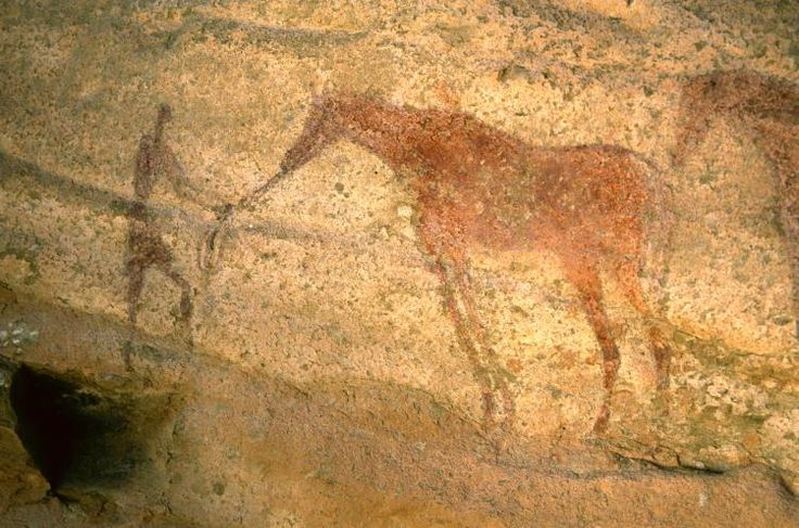 Painted human figure and horse. Tarssed Jebest, Tassili n'Ajjer, Algeria. Horse displays Arabian breed-type characteristics such as dished face and high tail carriage. Such images also remind us that horses were as much a cultural asset as the chariots they pulled, with the new investment involved in horse husbandry and its requirements of training, feeding and care shaping the societies that incorporated them.
