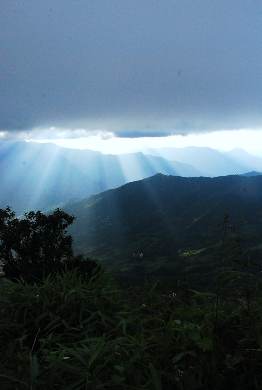 A view of Nature creation capture through the lense.  Location: Tamenglong, Manipur  India
