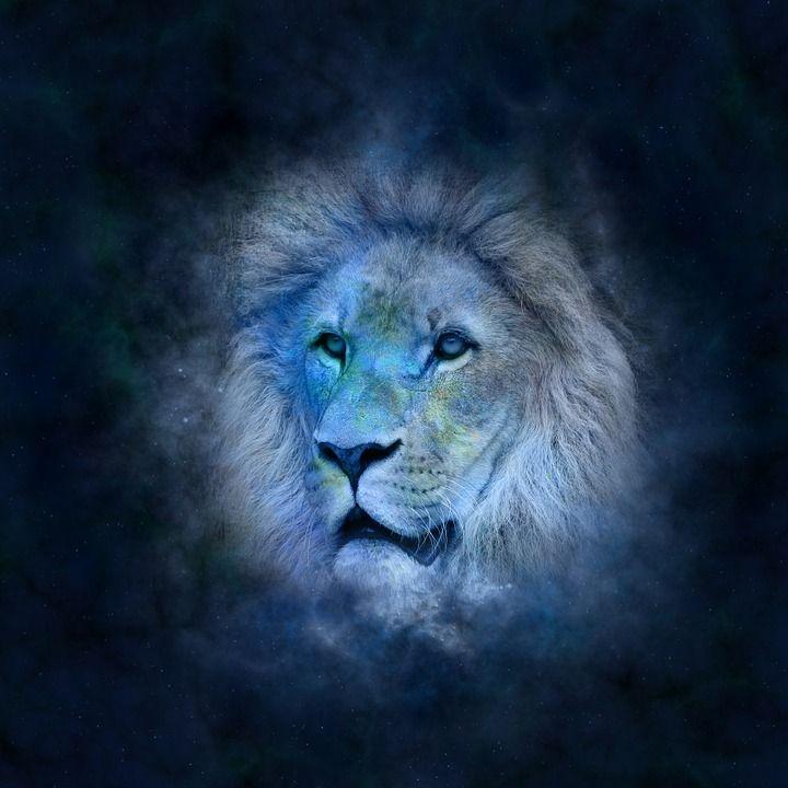 Horoskooppi, Astrologia, Eläinrata, Lion, Symboli Kuvat