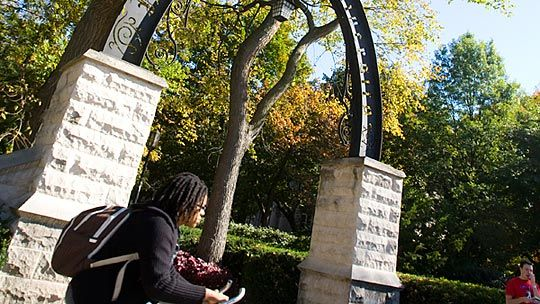 Northwestern University - Evanston, IL - Private University - Biomedical, Mechanical, Chemical Engineering