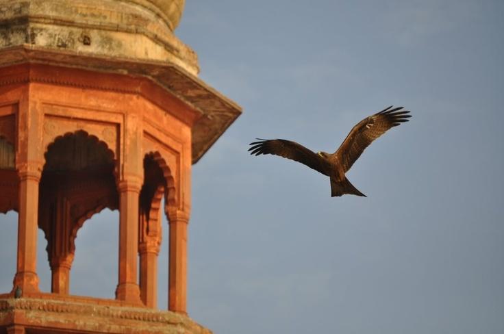 Bénarès - Varanasi (c) Thomas Sagory www.du-ciel.com