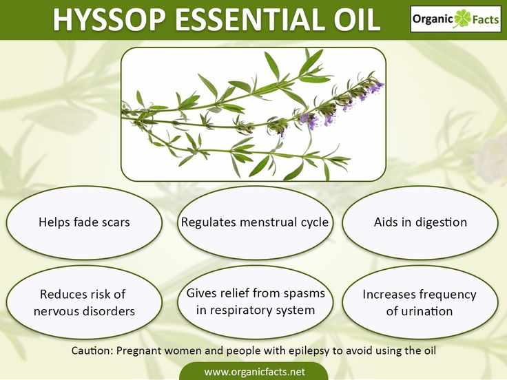 The health benefits of Hyssop Essential Oil can be attributed to its properties like Astringent, Stimulant, Anti Spasmodic, Anti Rheumatic, Anti Septic.