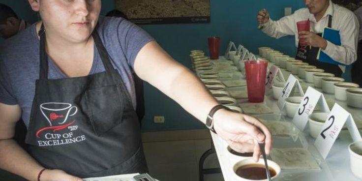 Certamen se realiza por primera vez en el país y tiene por objetivo mostrar al mundo la finura del café peruano. 20 ganadores participarán en una subasta electrónica