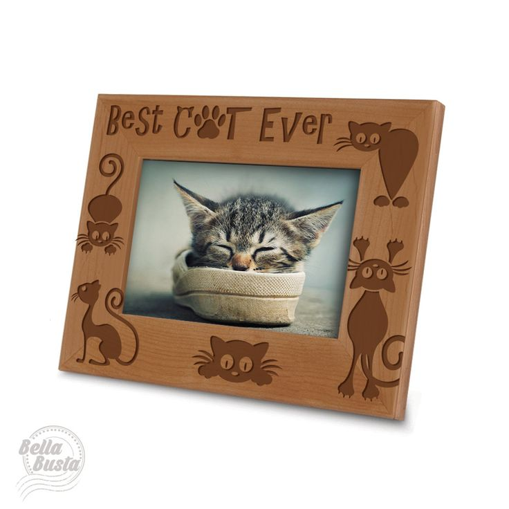 Best Cat Ever Picture Frame - Cat Picture Frame- Engraved Natural Picture Frame by BellaBustaGift on Etsy