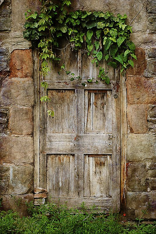 Door | ドア | Porte | Porta | Puerta | дверь | Bristol, England. Old wooden door, weathered, architechture, details, rustic, beauty, wall, photo