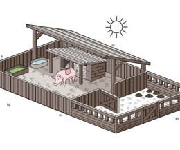 How to Set up a Pig Pen. Pigs are surprisingly clean animals, and you may make a pig miserable by simply building a cage around a mud puddle. Pigs need protection from the elements in the same way that humans do, and they need separate areas to eat, play, relieve themselves and even roll around
