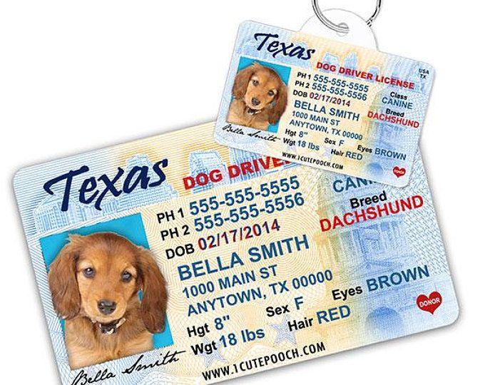 Michigan Driver License Custom Pet Id Tags And Wallet Card Dog