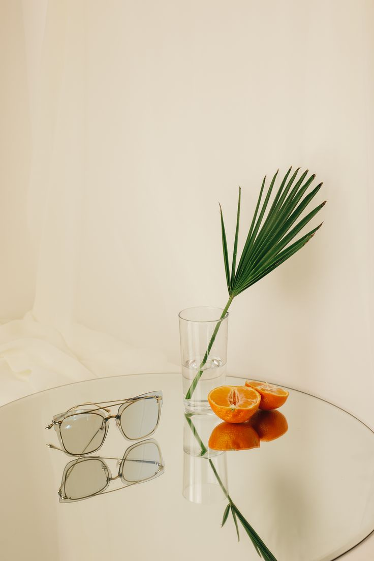 CONTEMPORARY STILL LIFE PHOTOGRAPHY ARRANGEMENT, LUXURY FASHION SUNGLASSES ART, FASHION STYLING WITH PLANT AND GLASS ON WHITE BACKGROUND, DRAPED FABRIC MATERIAL, FAS FOR ARTS SAKE EYEWEAR