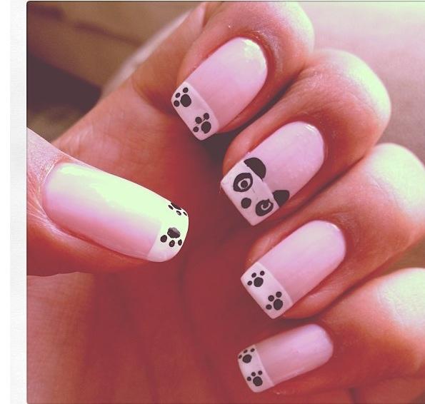Oso Panda !!