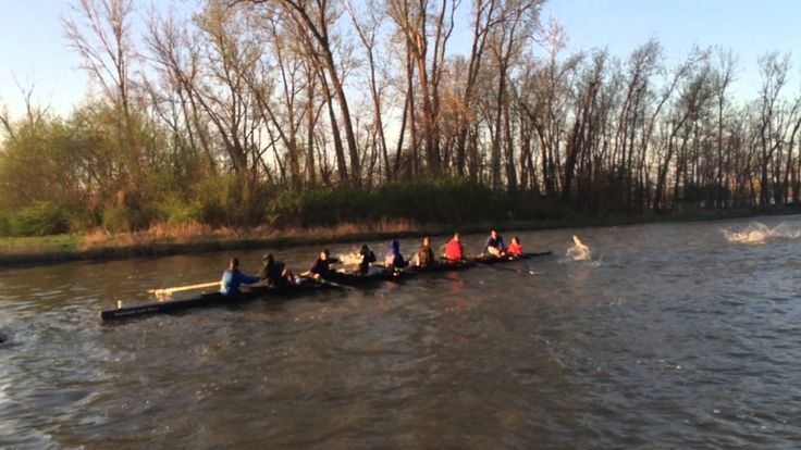 A University Crew Team Is Engulfed by Leaping Asian Carp While Rowing on a Missouri Lake