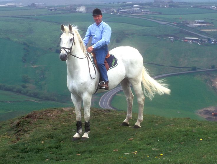 Amazing horse. John Whitaker and Milton