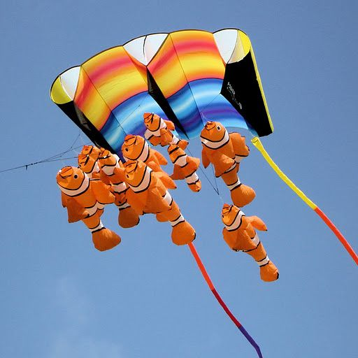 school of clown fish kite.