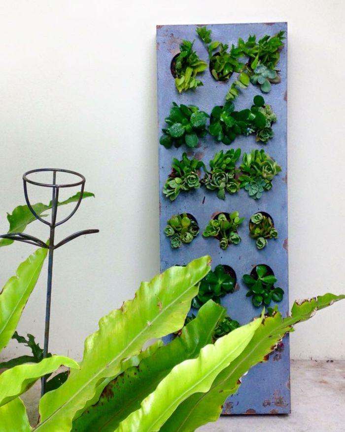 les 673 meilleures images du tableau jardinage sur pinterest. Black Bedroom Furniture Sets. Home Design Ideas