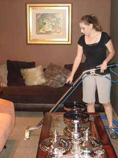 273 Best Images About Carpet Steam Cleaner Steam Lux Is A