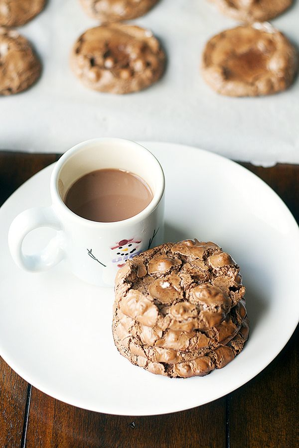 Cocoa cookie recipes easy