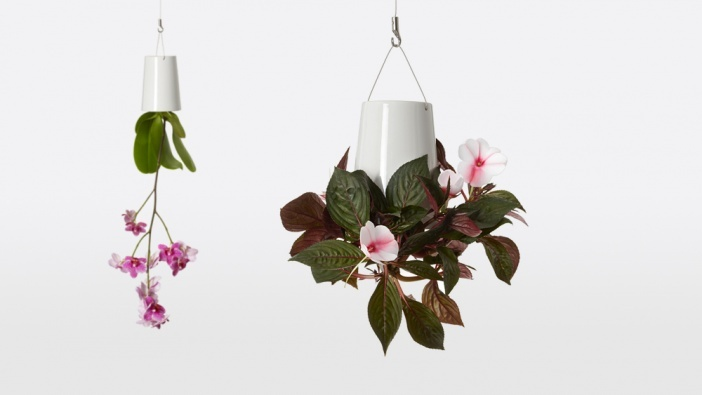 Sky Planter, planting container Medium