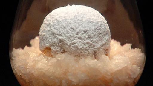 Guava and Custard Apple Snow Egg