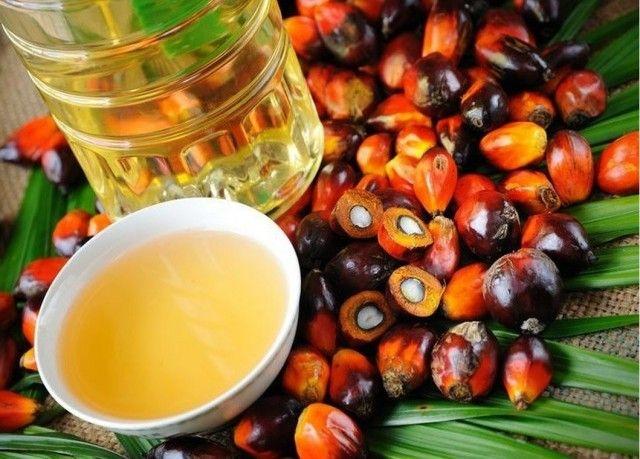 Пальмовое масло: вред и польза 0