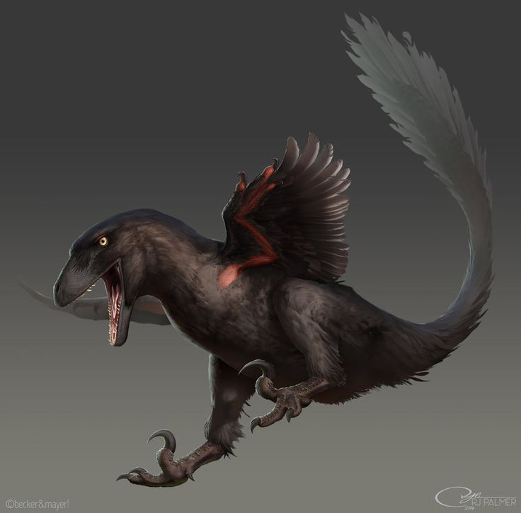 Rjpalmer Deinonychus 001 By Arvalis-d9xiymv by arvalis