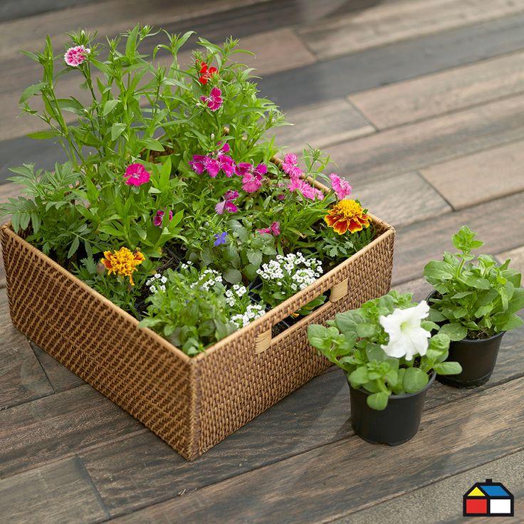 Flores para tu #Jardin #Terraza