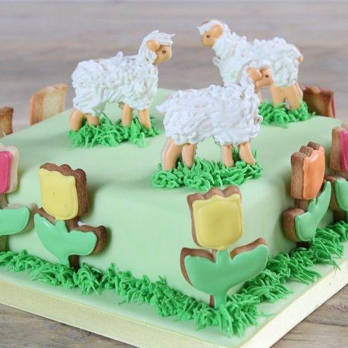 Deze prachtige koekjestaart is niet alleen erg leuk voor het Voorjaar, maar ook voor Pasen. De basis van deze taart is gemaakt van brownie, waarna de taart versierd wordt met gedecoreerde koekjes.