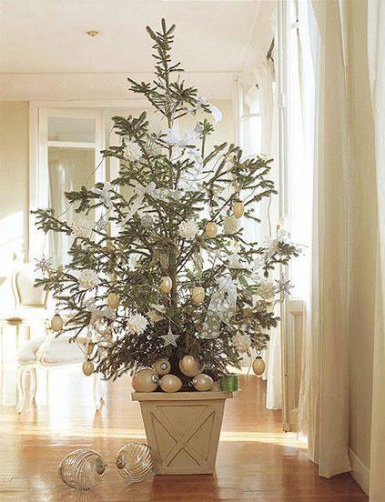 Cada año la decoración navideña puede ser distinta y sorprendente. En estas páginas te ofrecemos diferentes formas de vestir el árbol de Navidad. Ya sea natural o sintético, en verde o blanco, se ...