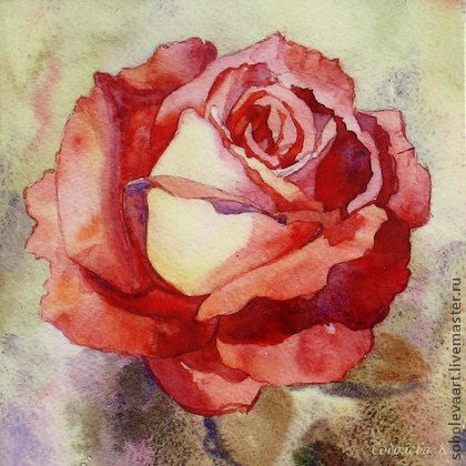 """Картина розовая Роза """"Медовая глазурь"""" авторская печать, чайная роза -"""