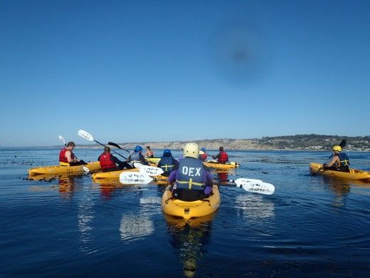 A Group of Kayakers on their way to the La Jolla Caves