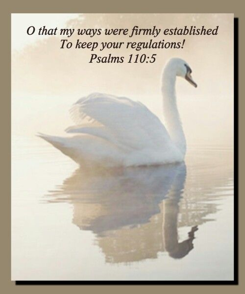 O that my ways were firmly established  To keep your regulations!   Psalms 110:5