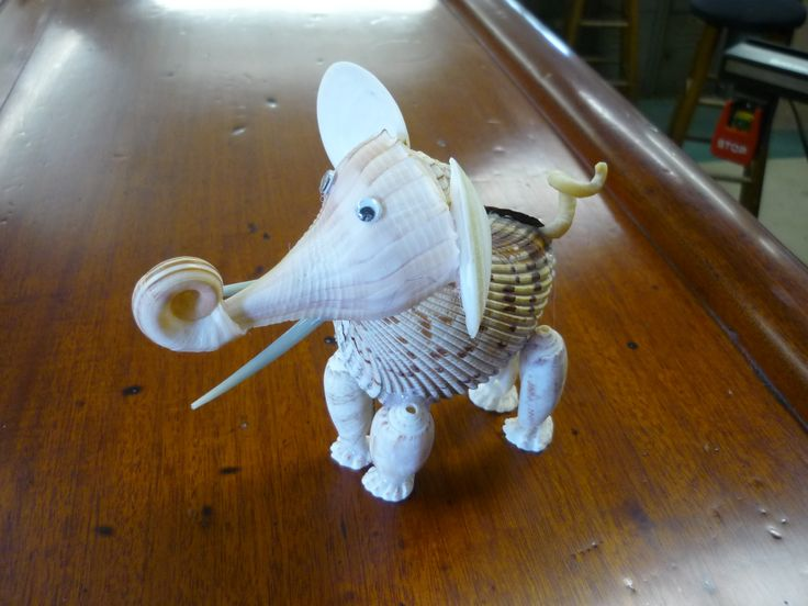 Elephant made entirely of shells! Pattern from Sanibel crafting club we visited in April.