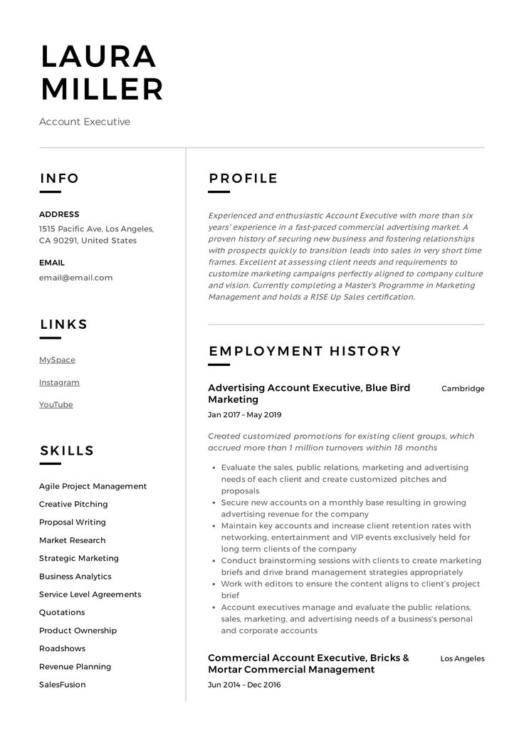 Professional Account Executive Resume, template, design