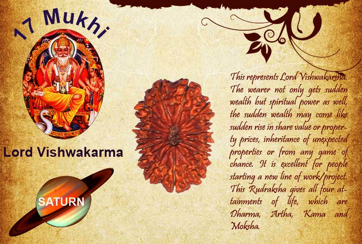 Benefits of Seventeen Mukhi Rudraksha:  God: Lord Vishwakarma / Planet: Saturn  This represents Lord Vishwakarma. The wearer not only gets sudden wealth but spiritual power as well, the sudden wealth may come like sudden rise in share value or property prices, inheritance of unexpected properties or from any game of chance. It is excellent for people starting a new line of work/project. See more http://www.rudralife.com/Rudraksha/details.php?id=23