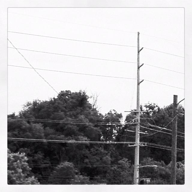 Wires: Wire, Photo