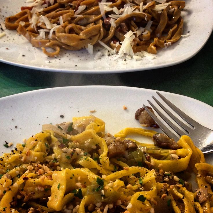 Home made LASAGNE and TAGLIOLINI with seasonal vegetables or mushrooms and sausages