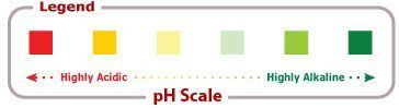 The Alkaline Food Chart  Complete list of alkaline foods and acidic food pH rat
