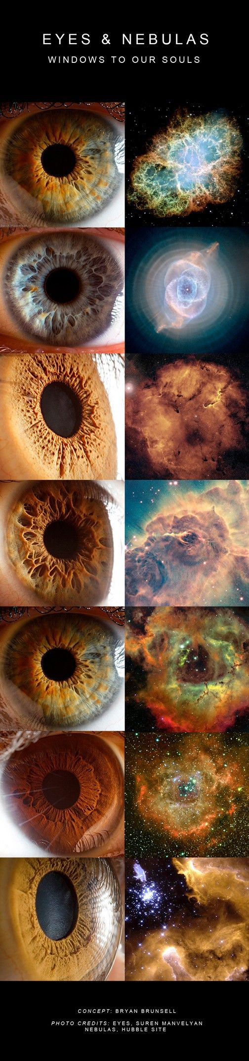 """eyes and nebulas. I think its amazing to see the familiarities between animals and nature and the universe... Like fractals for example. How can you not believe that everything is connected?"""