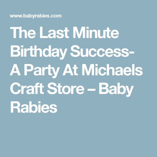 The Last Minute Birthday Success- A Party At Michaels Craft Store – Baby Rabies