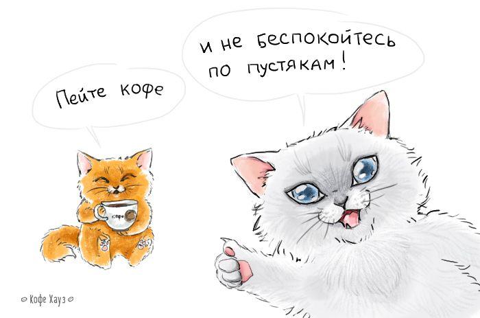 Совет дня :-)  #понедельник #кофе #кофехауз #coffee #котики #мимими