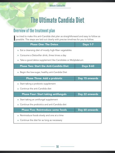 The 60 Day Plan -- Candida Diet, This Website Has Some