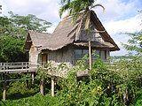 Hotel de Selva na Amazônia / Rondônia / Brasil