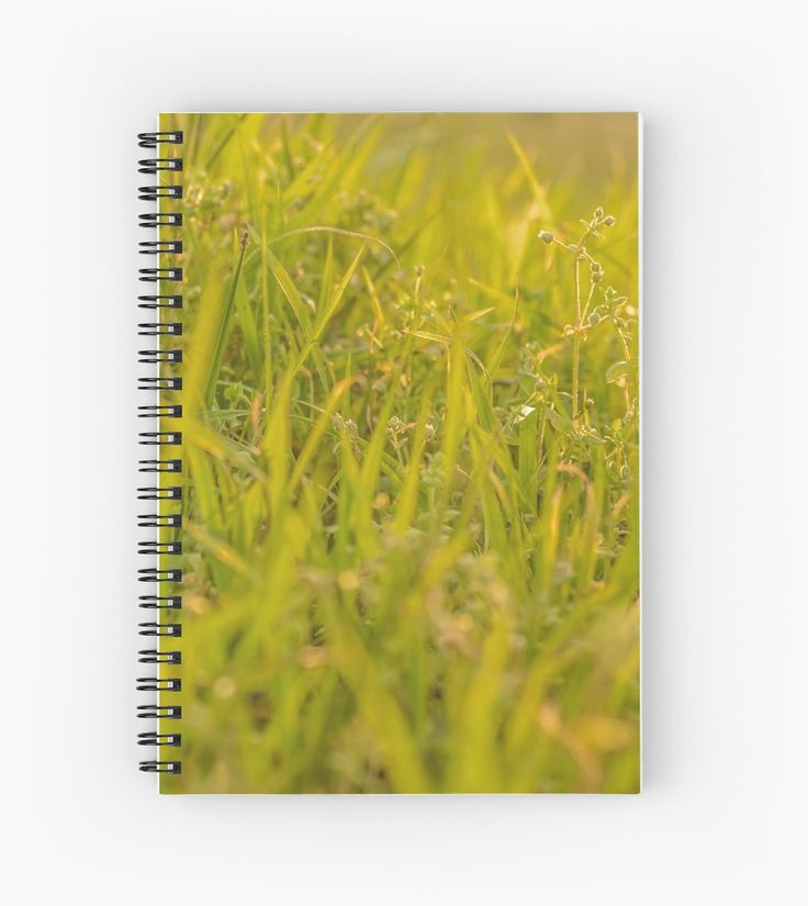 Grass closeup photo at afternoon time Notebook. Also buy this artwork on stationery, apparel, stickers, and more.
