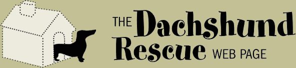 The Dachshund Rescue Web Page
