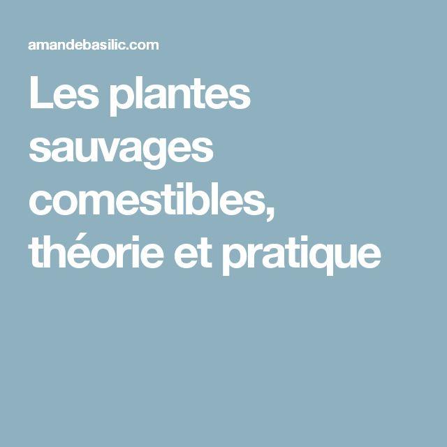 Les plantes sauvages comestibles, théorie et pratique