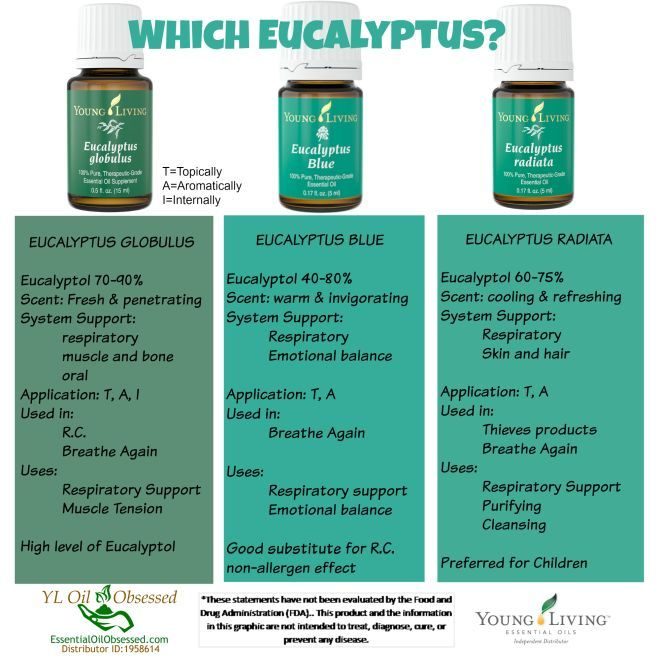 Which Eucalyptus oil?  Please note the recommended Application.  To learn more about using essential oils  -->www.livingyourlfenaturally.com