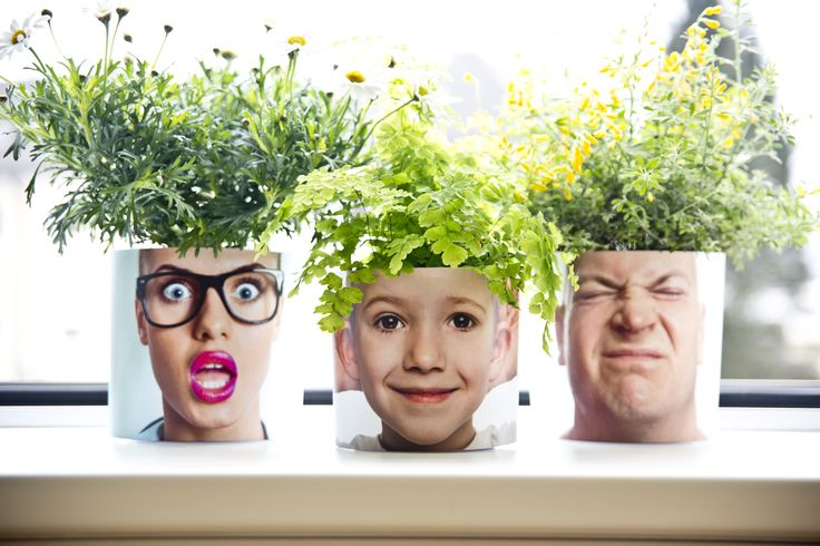 Blumentopfdesichter Decor Funny Family Face Flower