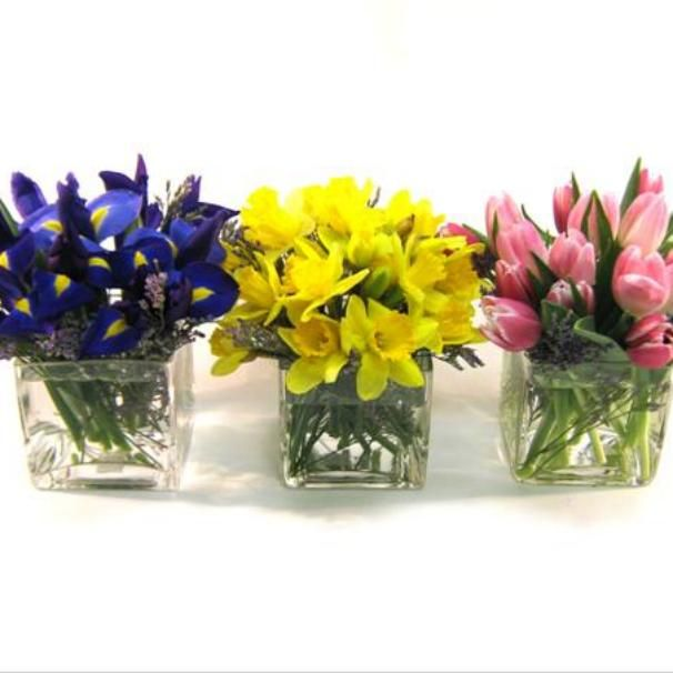 For a contemporary twist on the long low table centerpiece, try this trio of spring cubes for your Passover or Easter table.