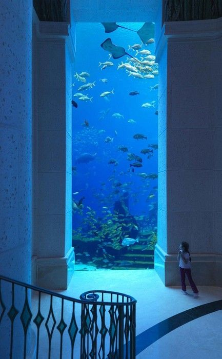 "If I see this image pinned once more as an ""underwater hotel"" in Dubai I might freak out.  I was just here 2 months ago.  It is a huge aquarium in the Atlantis hotel on the Palm in Dubai.  This is on the basement level where shopping and restaurants are located. Very cool place, but not anywhere near being an ""underwater hotel""."